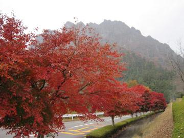 妙義山の紅葉・ふるさと美術館 3