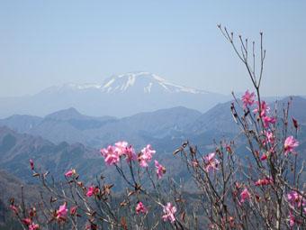 四ツ又山から鹿岳へ(続)