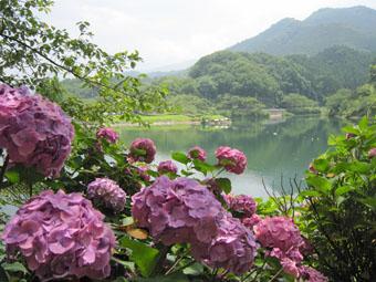 大塩湖のさんぽ