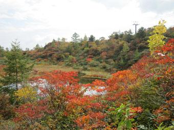 草津白根山・「武具脱の池」の散策