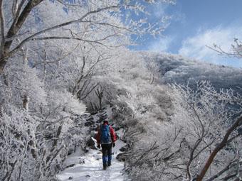赤城山・黒檜山の霧氷