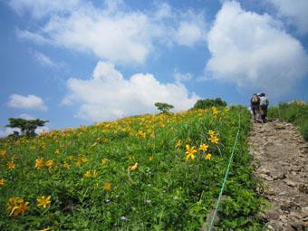 野反湖・弁天山~エビ山ハイキング
