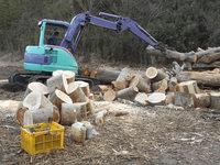 薪用原木を注文