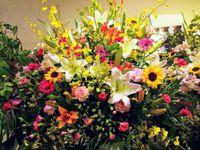 ンー‼花は綺麗だと思うけどね?