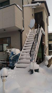 大雪にびっくりやら楽しいやら