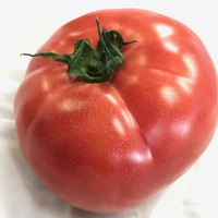 峯岸ファームのトマト