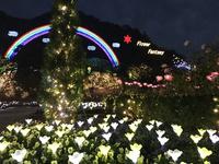 先日のイルミネーション 2017/12/05 12:26:21