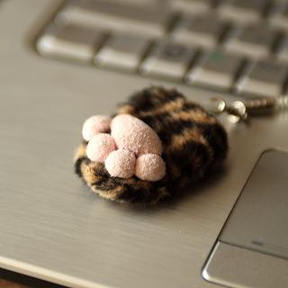 猫足の画面拭き