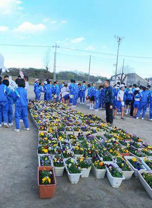 寺尾中学校 花植え