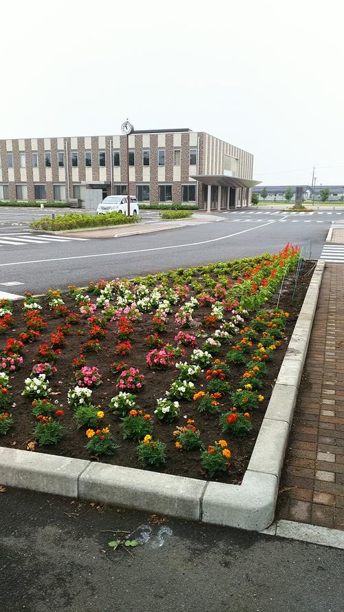 花植え こころにやさしい花さきますように