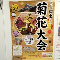 第63回 関東菊花大会(大光院)【祭情報】