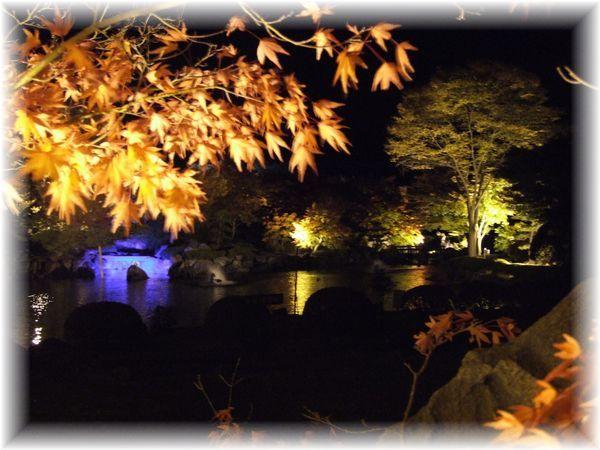 桜山ライトアップ