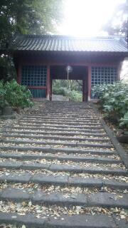 観音山の紅葉 清水寺
