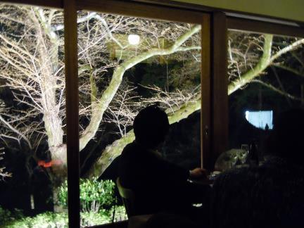 一路堂の夜桜カフェ