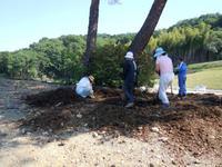 カッパピア跡地 2014 6月 松の炭撒き