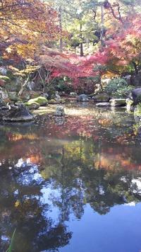 紅葉の名所  洞窟観音 徳明園