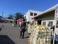 国府白菜祭り開催される