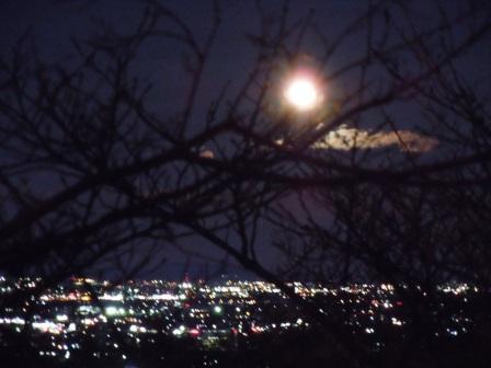 夜景はきれい