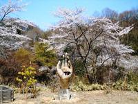 カッパピア跡地 現在 2013.4.4 桜の続き