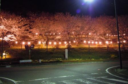 桜 城山団地