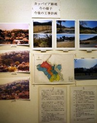 第21回 観音山丘陵の自然展の様子