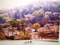 第21回 観音山丘陵の自然展 カッパピア