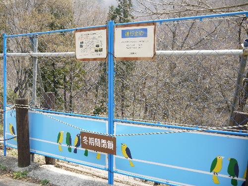 滝見橋 降口