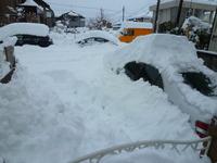 こんな凄い雪初めて