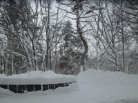 雪がたっぷりの草津温泉です