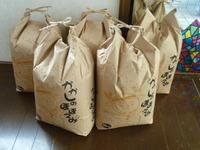 合鴨農法のお米+天日干し