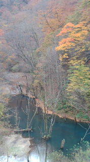 四万川ダムの源流