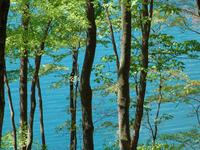 奥四万湖と新緑