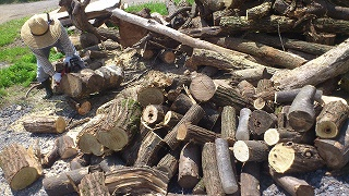 薪狩りツアー お疲れさまでした!