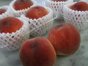 美味しい桃が・・・