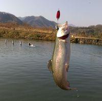新年初釣り&プール&風呂の正月休み最終日
