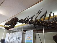 恐竜と鯉のぼり