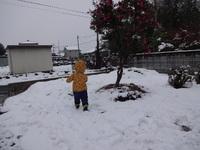 初、雪遊び