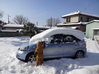 雪遊び~♪