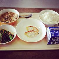 朝倉小学校に行ってきました!