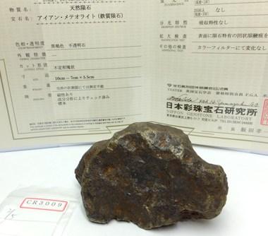ギベオン隕石の原石です