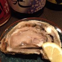 岩牡蠣はじめました‼