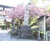 久々の榛名神社。