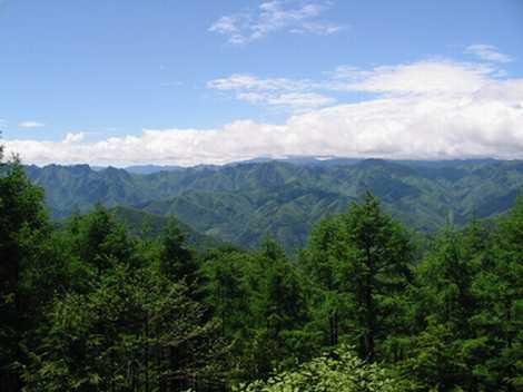 上野村山開き!