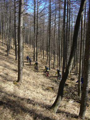 自転車ツアーが上野村で開催されました 続編