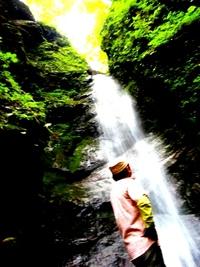 森林セラピータイムスケジュール