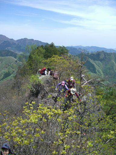 「上野村山開き2010」開催されました!