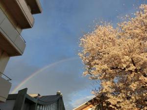 虹が出ましたね!