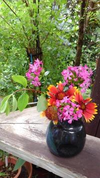 カラフルなお花たち