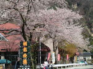 2014年4月20日から「老神温泉 朝市」開催!