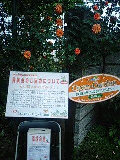 薔薇の季節のオープンガーデン